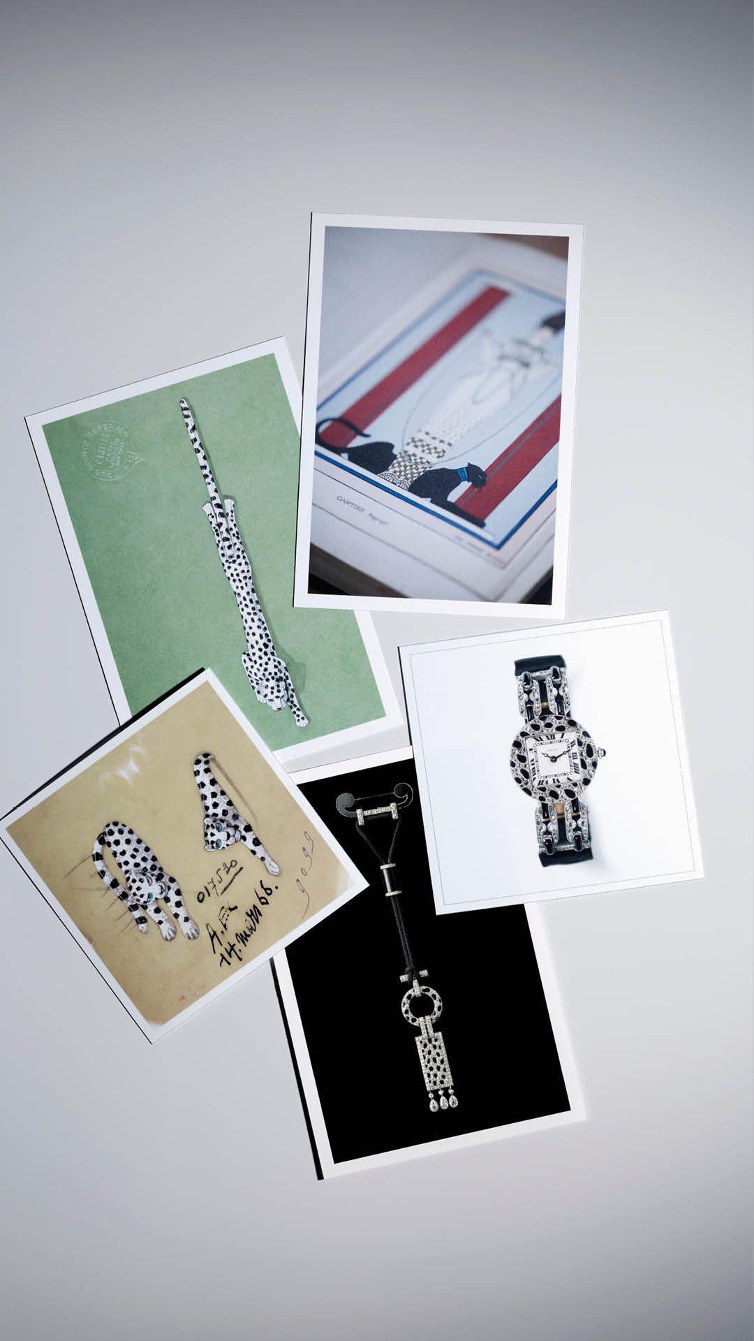Cartier de Panthere Collection