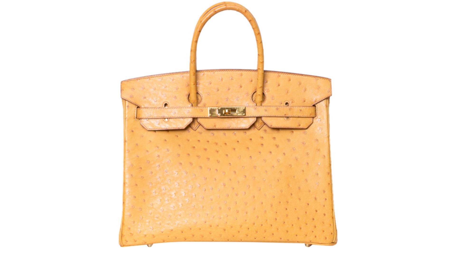 Hermes Birkin Yellow Ostritch Luxury Closet