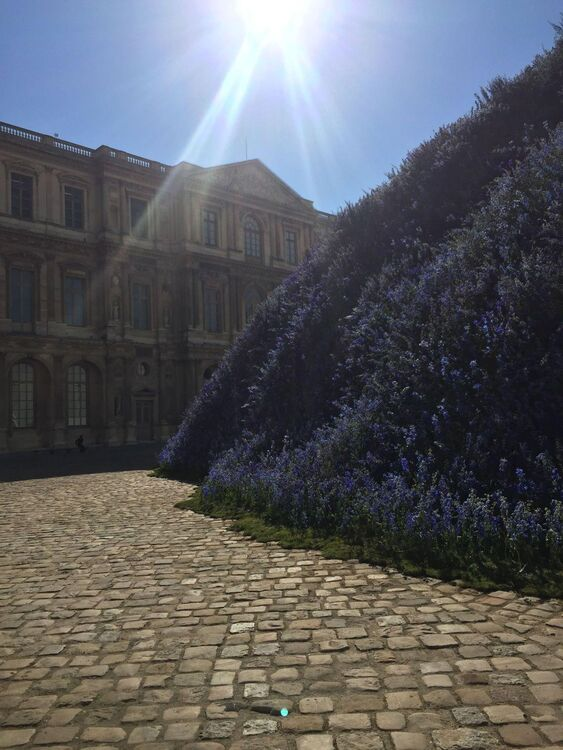 Dior plants Half A Million Flowers At The Louvre For S/S16
