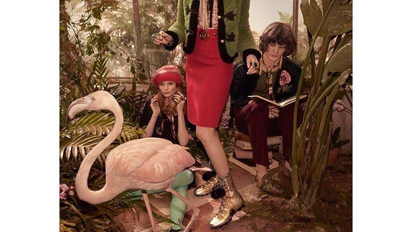 Gucci's Pre-Fall Campaign Has Landed