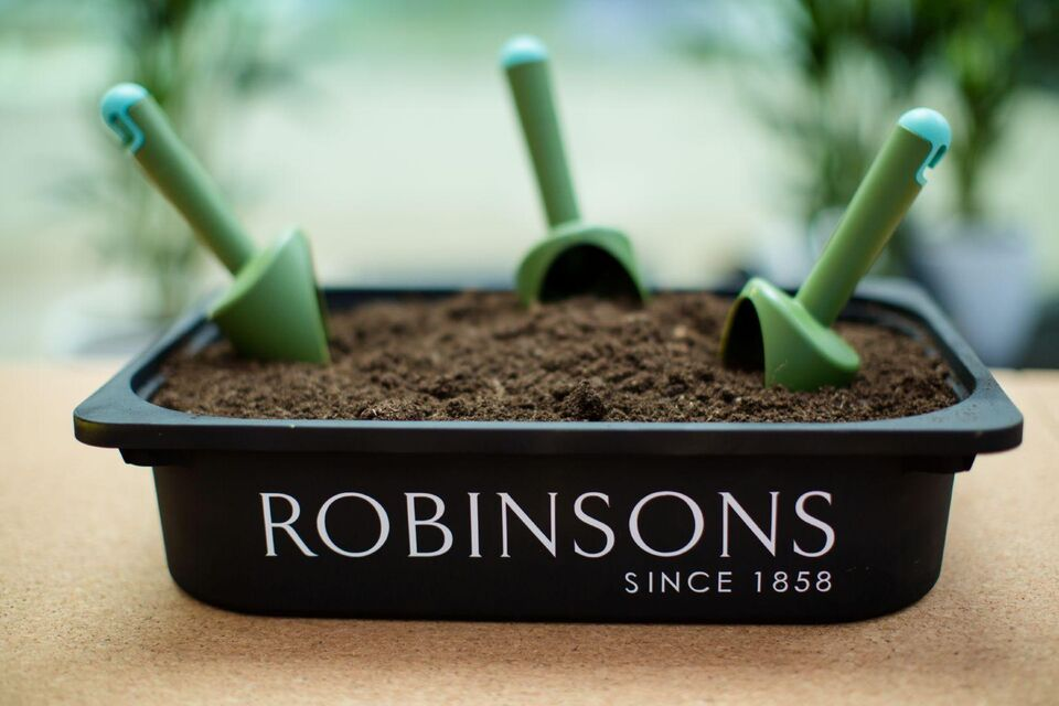 Robinsons Set to Launch Dubai's First In-Store Vertical Garden