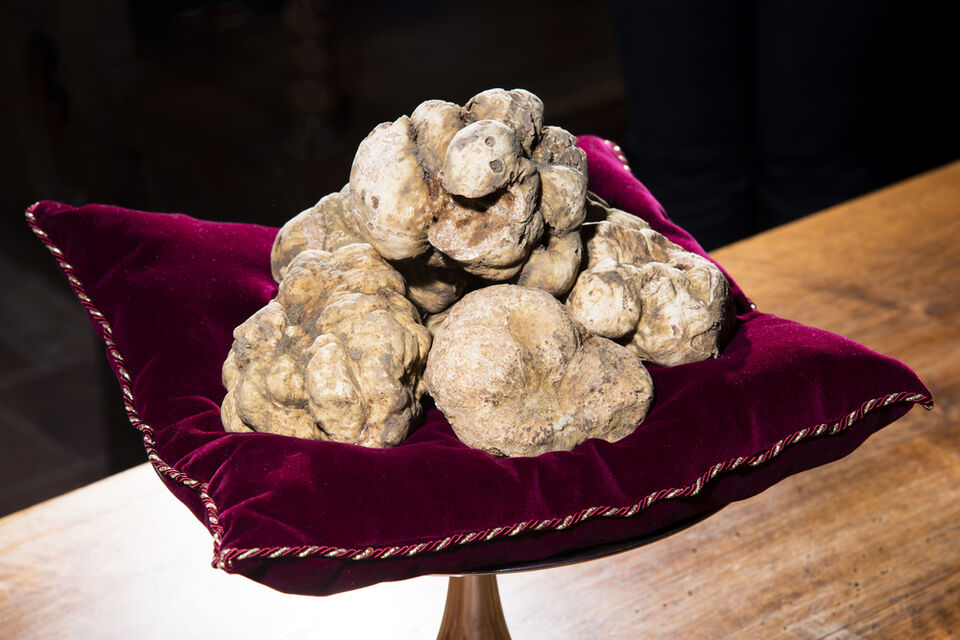 Dubai Is Set To Break The World Record For The Most Expensive Truffle