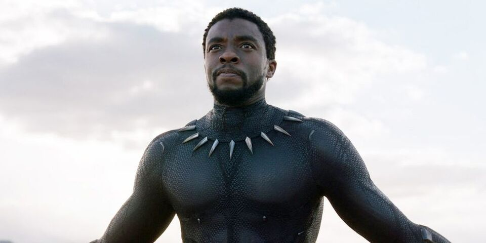 Black Panther Has Beaten Titantic's Box Office Record