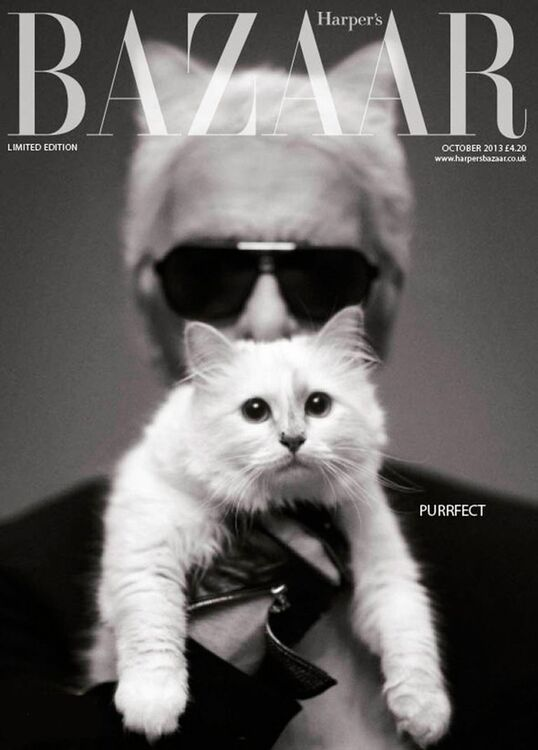 Karl Lagerfeld's Cat Choupette Could Inherit Some Of His Fortune