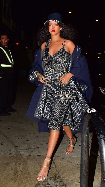 Rihanna Just Schooled Us All In Wearing Head-To-Toe Dior