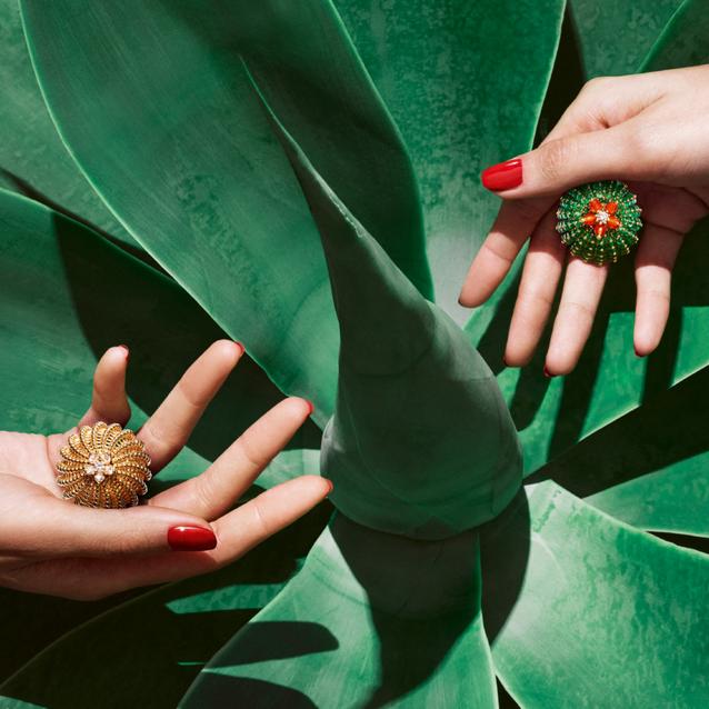 Cartier Launches 'Cactus de Cartier' In Paris
