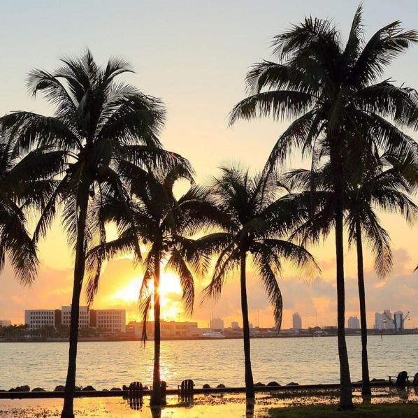 The Best Instagrams From #MiamiSwimWeek 2016