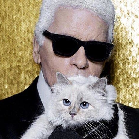 You Will Now Be Able To Own Your Very Own Choupette
