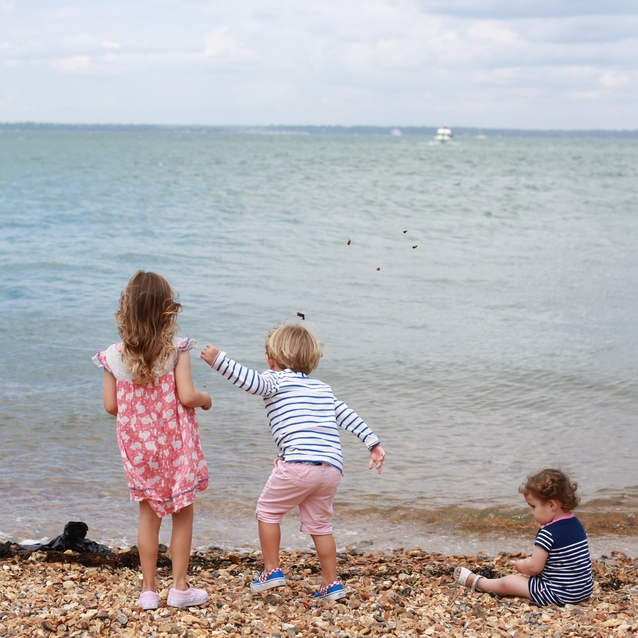 New Forest: Your UK Family Summer Stay Sorted