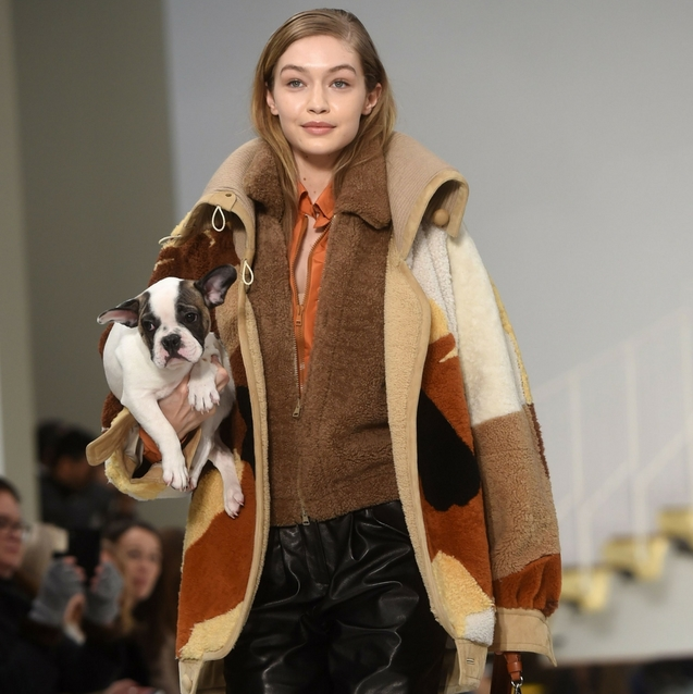 Models Carried Puppies Down The Tod's Autumn/Winter 2018 Runway