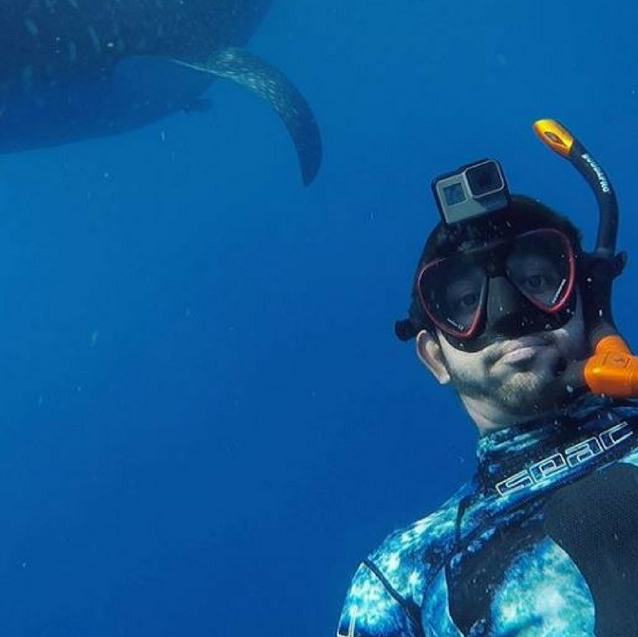 Watch: Dubai's Crown Prince Goes Swimming With Sharks