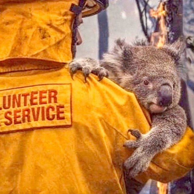 Watch   Expo 2020 Dubai Launches #MatesHelpMates Campaign To Support Australia's Bushfire Crisis