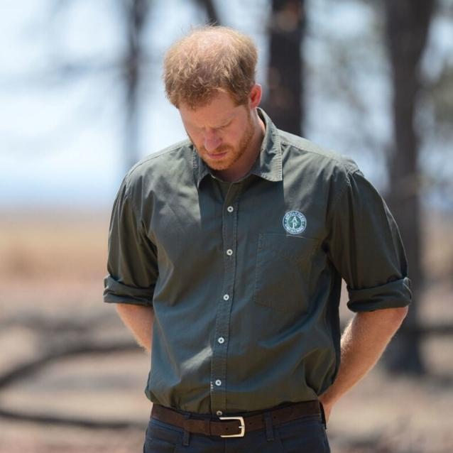 Prince Harry Reveals His Dream Job